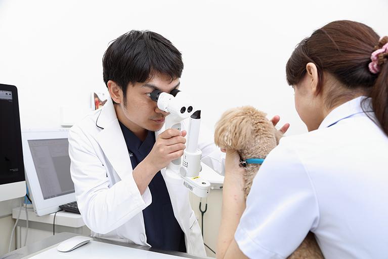 夜間(時間外)診療緊急診療(要予約)